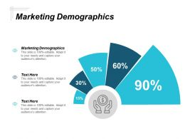 Marketing Demographics Ppt Powerpoint Presentation Gallery Mockup Cpb
