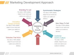 Marketing Development Approach Ppt Examples Professional