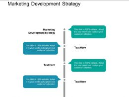 Marketing Development Strategy Ppt Powerpoint Presentation Styles Picture Cpb