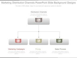 Marketing Distribution Channels Powerpoint Slide Background Designs