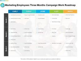 Marketing Employees Three Months Campaign Work Roadmap