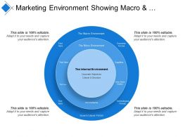 Marketing Environment Showing Macro And Micro Environment