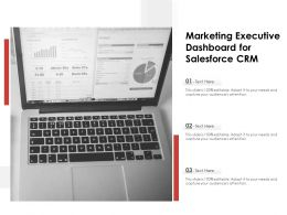 Marketing Executive Dashboard For Salesforce CRM