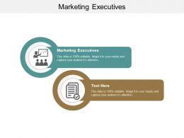 Marketing Executives Ppt Powerpoint Presentation Icon Diagrams Cpb