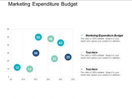 Marketing Expenditure Budget Ppt Powerpoint Presentation Styles Maker Cpb