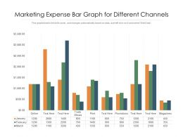 Marketing Expense Bar Graph For Different Channels