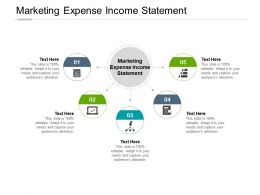 Marketing Expense Income Statement Ppt Powerpoint Presentation Ideas Cpb
