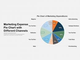 Marketing Expense Pie Chart With Different Channels