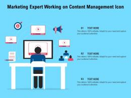 Marketing Expert Working On Content Management Icon