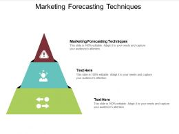 Marketing Forecasting Techniques Ppt Powerpoint Presentation Outline Format Cpb
