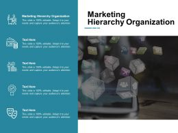 Marketing Hierarchy Organization Ppt Powerpoint Presentation Portfolio Slides Cpb