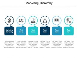 Marketing Hierarchy Ppt Powerpoint Presentation Infographic Template Display Cpb