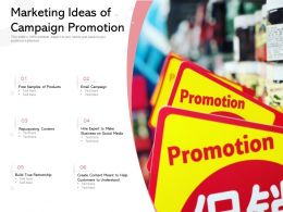 Marketing Ideas Of Campaign Promotion