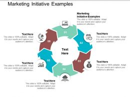 Marketing Initiative Examples Ppt Powerpoint Presentation Portfolio File Formats Cpb