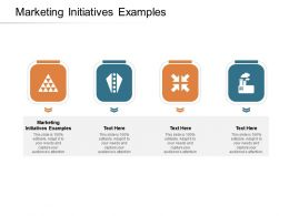 Marketing Initiatives Examples Ppt Powerpoint Presentation Visual Aids Cpb