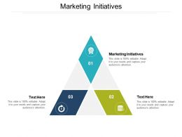 Marketing Initiatives Ppt Powerpoint Presentation Slides Diagrams Cpb