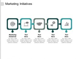 Marketing Initiatives Ppt Slides Visuals Cpb