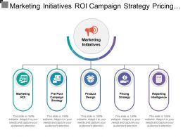 Marketing Initiatives Roi Campaign Strategy Pricing Product Reporting