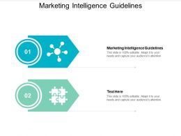 Marketing Intelligence Guidelines Ppt Powerpoint Presentation Gallery Background Cpb