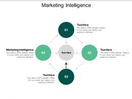 Marketing Intelligence Ppt Powerpoint Presentation Styles Summary Cpb