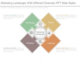 Marketing Landscape With Different Channels Ppt Slide Styles