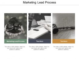 Marketing Lead Process Ppt Powerpoint Presentation Summary Objects Cpb