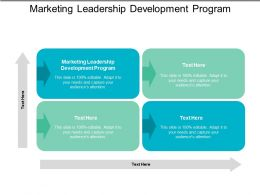 Marketing Leadership Development Program Ppt Powerpoint Presentation File Gridlines Cpb