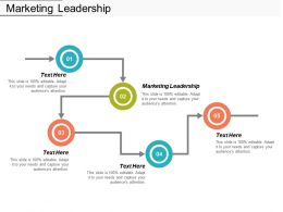 Marketing Leadership Ppt Powerpoint Presentation Styles Picture Cpb
