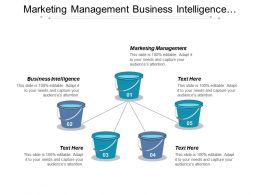 Marketing Management Business Intelligence Marketing Strategies Asset Management Cpb