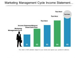Marketing Management Cycle Income Statement Balance Sheet Cash Flow Cpb