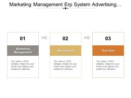 Marketing Management Erp System Advertising Techniques Leadership Skills
