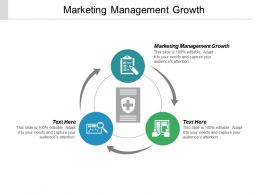 Marketing Management Growth Ppt Powerpoint Presentation Icon Example Introduction Cpb