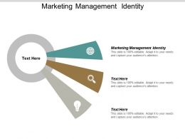 Marketing Management Identity Ppt Powerpoint Presentation Pictures Aids Cpb