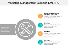 Marketing Management Solutions Email ROI Ppt Powerpoint Presentation Professional Skills Cpb