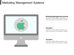 Marketing Management Systems Ppt Powerpoint Presentation File Example Introduction Cpb