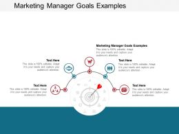 Marketing Manager Goals Examples Ppt Powerpoint Presentation Gallery Graphics Pictures Cpb