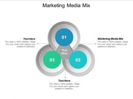 Marketing Media Mix Ppt Powerpoint Presentation File Deck Cpb