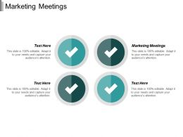 Marketing Meetings Ppt Powerpoint Presentation Outline Introduction Cpb