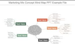 Marketing Mix Concept Mind Map Ppt Example File