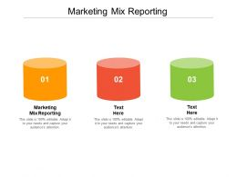 Marketing Mix Reporting Ppt Powerpoint Presentation Summary Outline Cpb
