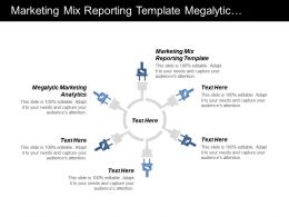 Marketing Mix Reporting Template Megalytic Marketing Analytics Cpb
