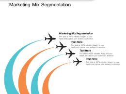 Marketing Mix Segmentation Ppt Powerpoint Presentation Professional Graphics Template Cpb