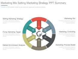 Marketing Mix Setting Marketing Strategy Ppt Summary