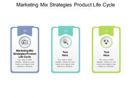 Marketing Mix Strategies Product Life Cycle Ppt Powerpoint Presentation Professional Format Cpb