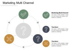 Marketing Multi Channel Ppt Powerpoint Presentation File Design Ideas Cpb