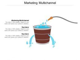 Marketing Multichannel Ppt Powerpoint Presentation Gallery Template Cpb