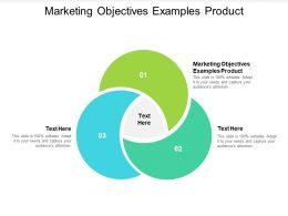 Marketing Objectives Examples Product Ppt Powerpoint Presentation Gallery Tips Cpb