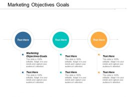 Marketing Objectives Goals Ppt Powerpoint Presentation Layouts Background Designs Cpb
