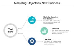 Marketing Objectives New Business Ppt Powerpoint Presentation Styles Microsoft Cpb