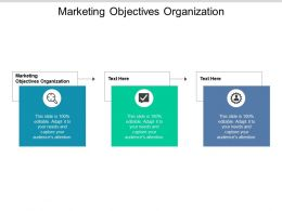 Marketing Objectives Organization Ppt Powerpoint Presentation Summary Pictures Cpb